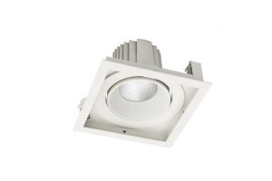 Pegasus H LED 1x IP20